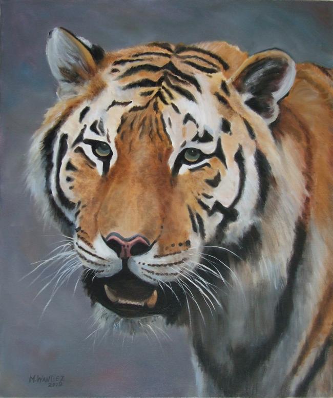 Huile tete de tigre - Image tete de tigre ...