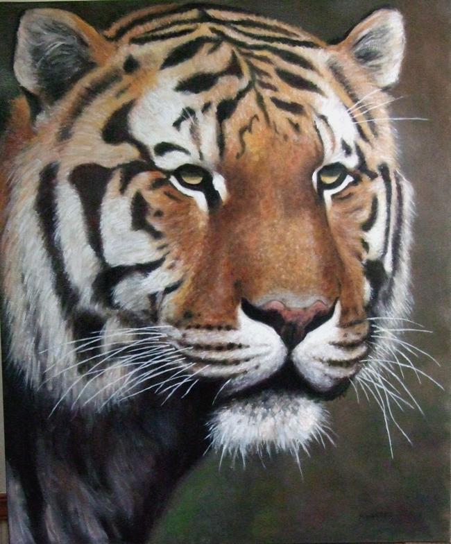 Huile tete de tigre 20f - Image tete de tigre ...
